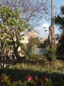 Jardin des Oudaïas - Rabat